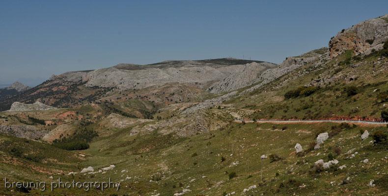 andalusisches outback I - auf dem weg nach el burgo