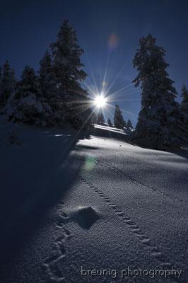 puerschling / unterammergau: winter wonder land