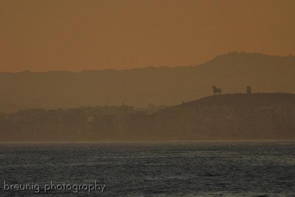 das andalusische fotomotiv - el torre II