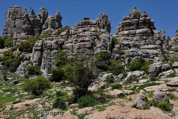 paraje natural torcal de antequera IX - karst pur und wilde landschaften