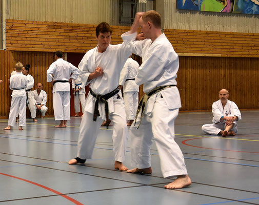 Wado Seminar with Koichi Shimura in Gothenburg 19 – 21 May 2017. Kihon Kumite.