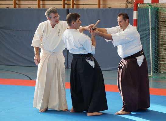 Wado and TSYR Seminar with Toby Threadgill and Koichi Shimura on 16 and 17 February 2020 in Berlin
