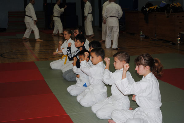 Karate Club Nord e. V.: Jubilee seminar on 26 and 27 November 2016 in Berlin.