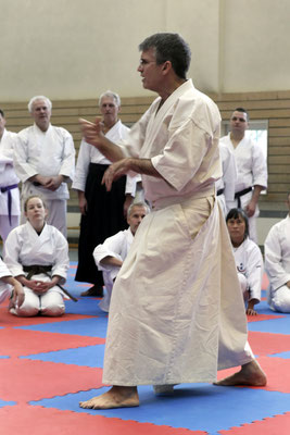 Wado and TSYR seminar with Toby Threadgill (USA) and Koichi Shimura (Japan)  on 17th and  18th  February, 2018 in Berlin