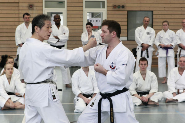 Wado and TSYR Seminar with Toby Threadgill and Koichi Shimura on 18 and 19 February 2017 in Berlin