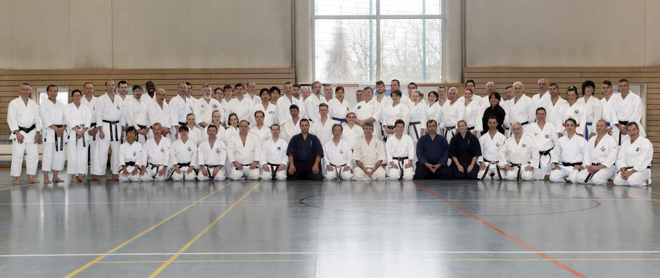 Wado and TSYR seminar with Toby Threadgill (USA) and Koichi Shimura (Japan)  on 17th and  18th  February, 2018 in Berlin. Foreign guests