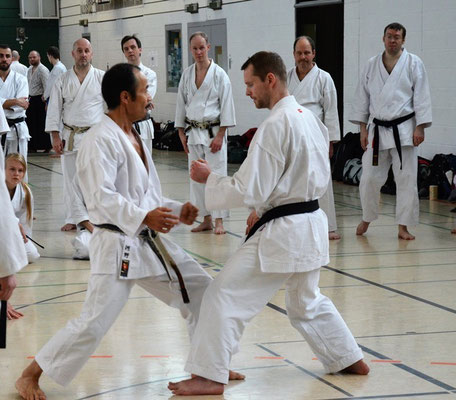 Wado and TSYR Seminar with Toby Threadgill and Kaki Kawano, February 06 - 07, 2016 in Berlin