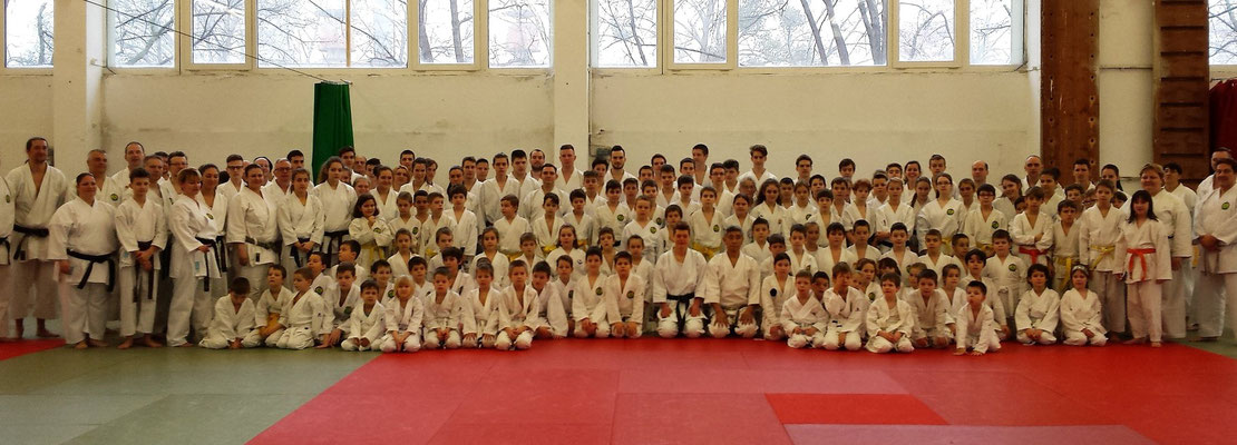 Wado Kai Seminar in Budapest on January 29 - 31, 2016
