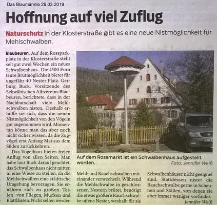 Das Blaumännle 29.03.2019 Schwalbenhaus in Blaubeuren