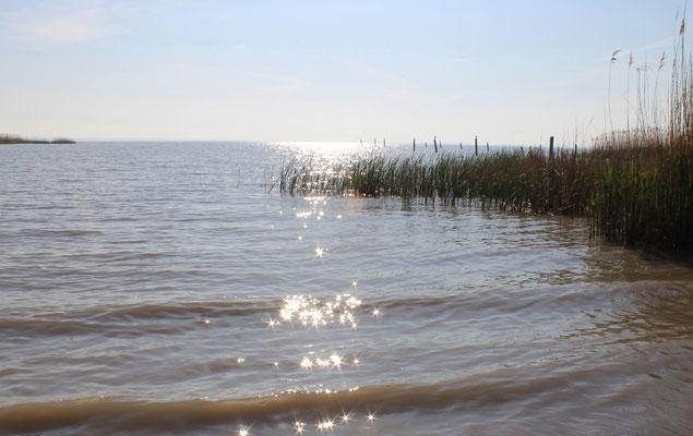 Sonnenspiel im Wasser