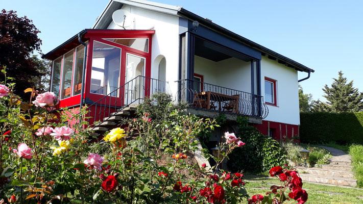 Rosen und Ferienhaus