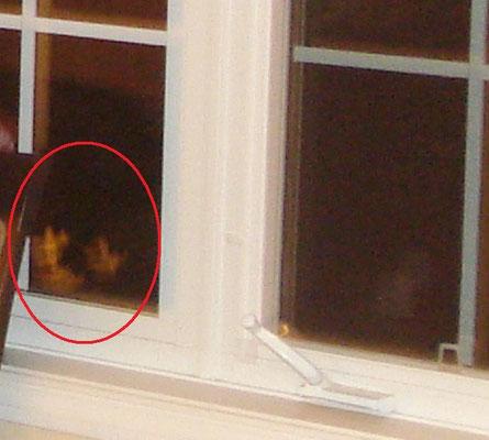 On semble y voir deux visages. (explication plus en détail dans les deux prochaines photos)