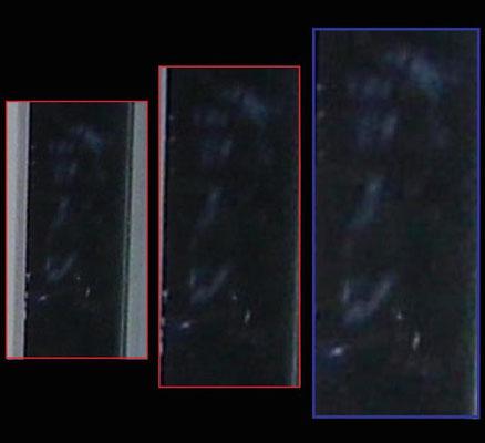 L'APPARITION EN QUESTION : Les deux premières photos encadrées de rouge sont agrandies sans retouche et celui encadré de bleu, une légère augmentation de la luminosité pour mieux comparer les photos. (reculer votre regard pour mieux voir)