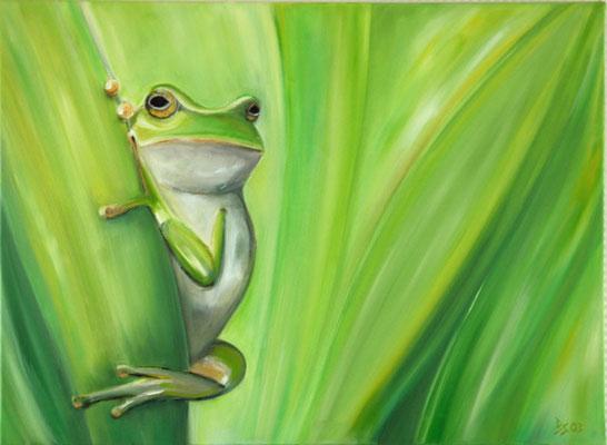 2003 Frosch