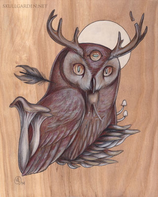 Horned Owl. 2014.