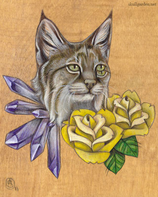 Bobcat with Roses. 2013.