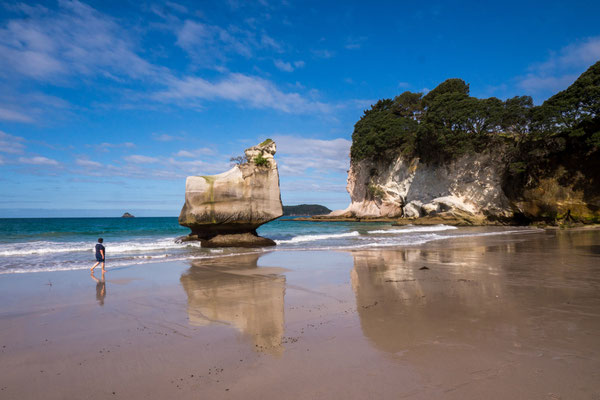 Cathedral Cove Beach [New Zealand, 2014]