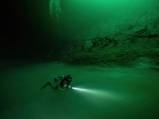 Cenote La Orquidea
