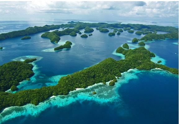 Palau, 2008