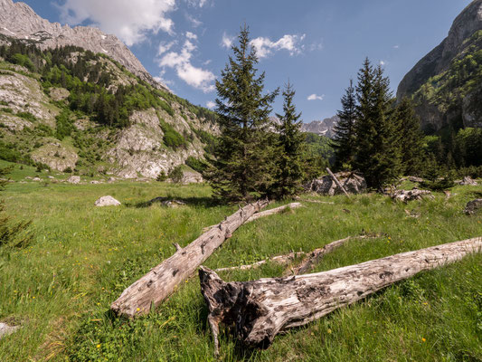 Sutjeska national park, at the border to Montenegro