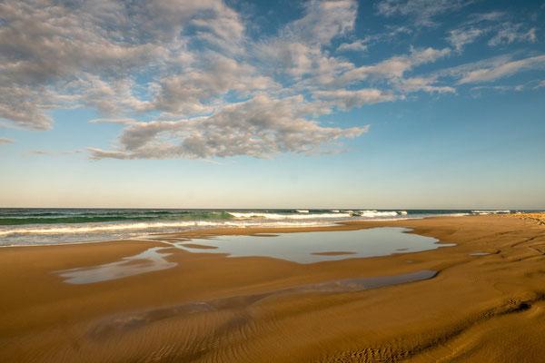 Fraser Island [Australia, 2018]