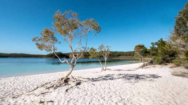 Lake McKenzie, Fraser Island [Australia, 2018]
