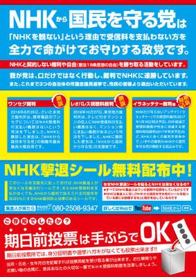 nhk から 国民 を 守る 党 公約