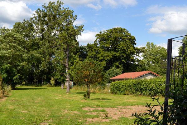 Grand terrain - gîte de l'étrier - location vacances - GRAND-EST
