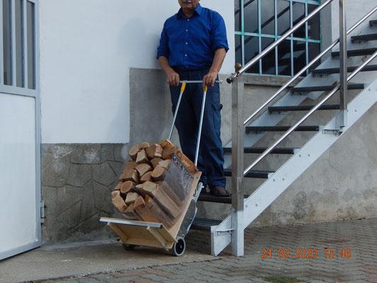 il Dondolino sulla scala con 30 kg di legna per la stufa