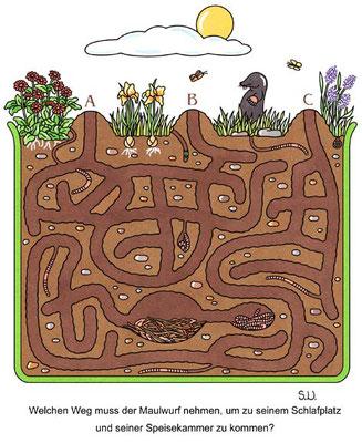 Labyrinth mit einem Maulwurf, Bilderrätsel