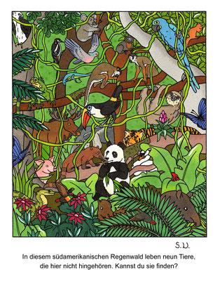 Suchbild, Tiere im Regenwald, Bilderrätsel