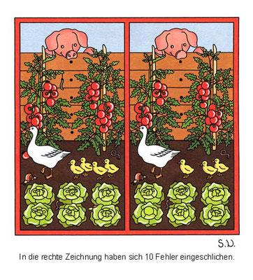 Fehlersuchbild, Gänsefamilie im Gemüsebeet, Bilderrätsel