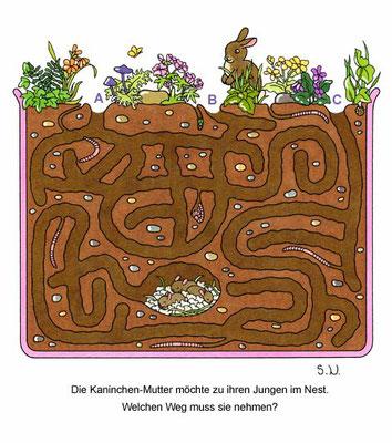 Labyrinth mit Kaninchen und Nest, Bilderrätsel