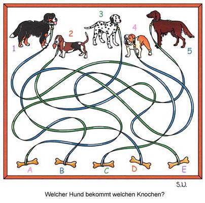 Labyrinth Hunde und Knochen, Bilderrätsel
