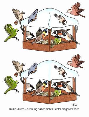 Fehlersuchbild, Vögel an einem Futterhaus, Winter, Bilderrätsel