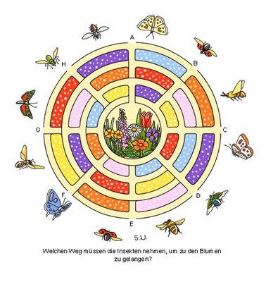 Labyrinth mit Blumen und Insekten, Bilderrätsel