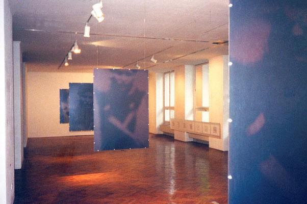 "KunstBEGEGNUNG: ""like an animal"" Fotografie/Serie 2000"