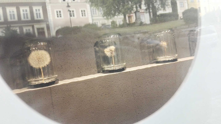"""KunstBEGEGNUNG: """"sag mir wo die blumen blühen"""" POP-UP INSTALLATION 2019 Gruß aus Weitra"""