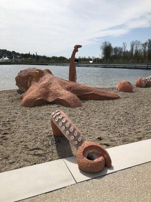 Oktopus mit Wassertechnik Foto clubL94, Köln
