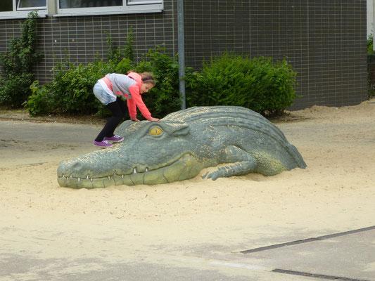 auftauchendes Krokodil