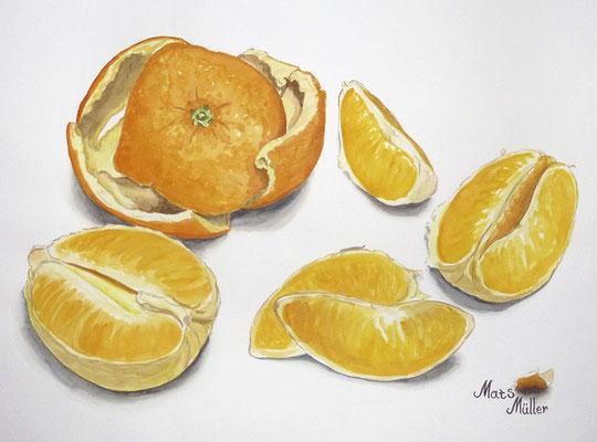 Mats Müller, Skalad apelsin, 40x30cm