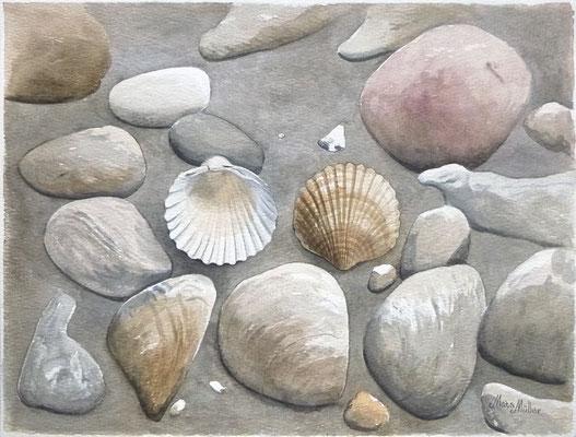 Mats Müller, Snäckor bland stenar, 40x30cm