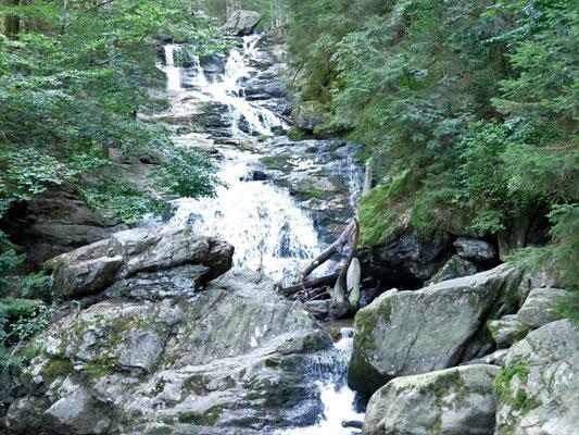 Der Riesbach fällt über fünf Stufen mit einer Gesamthöhe von 55m, wobei der Hauptfall 15m hoch ist