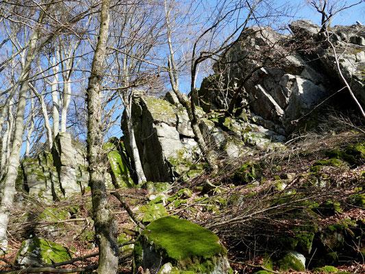 Der Geotop Büchelstein liefert einen Blick in die Erdgeschichte.