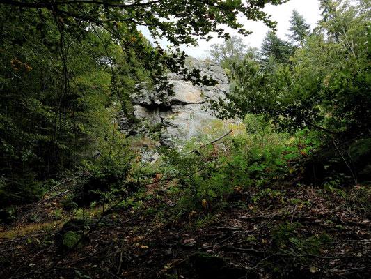 Schöne Felsformationen findet man im Wald