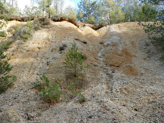 Der Geotop liefert einen Einblick in die Ablagerungen des Tertiär.