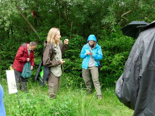 Lea Stier gab eine spannende Einführung in das Leben des Dunklen Wiesenknopf-Ameisenbläulings