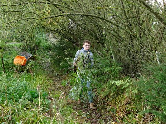 Das Schnittgut wurde per Hand oder per Schubkarre in den Wald transportiert