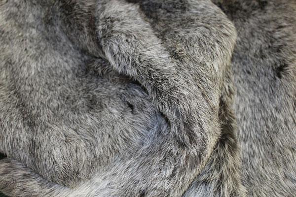 Bandine di lapin jumbo chinchilla