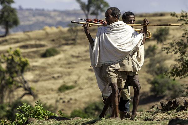 Bauern auf dem Weg zum Markt Äthiopien